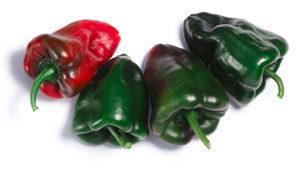 Pepper-Poblano-Ancho