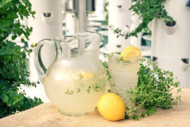 Sparkling Thyme Lemonade